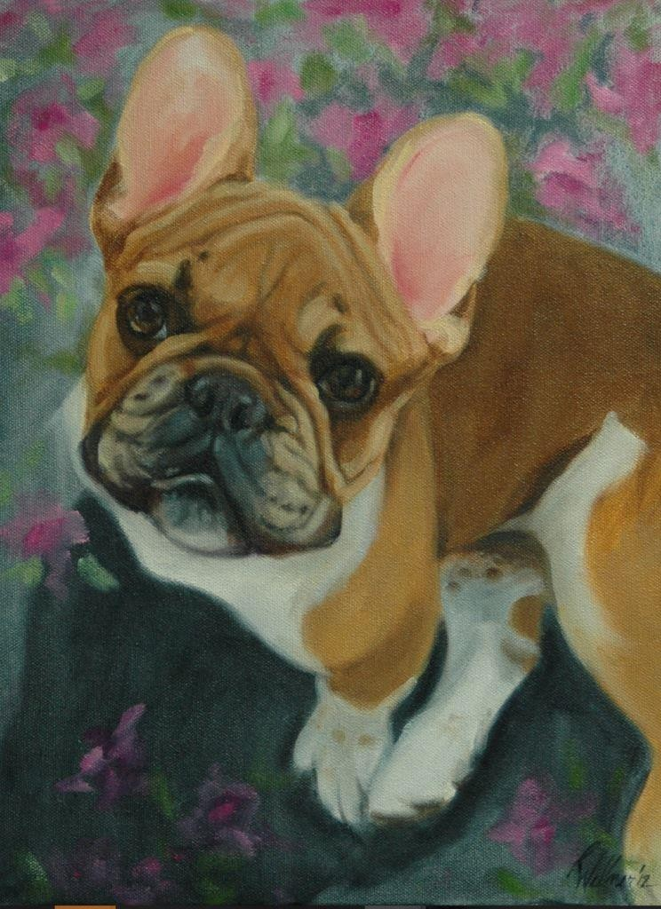Pet Whimsy Portraits