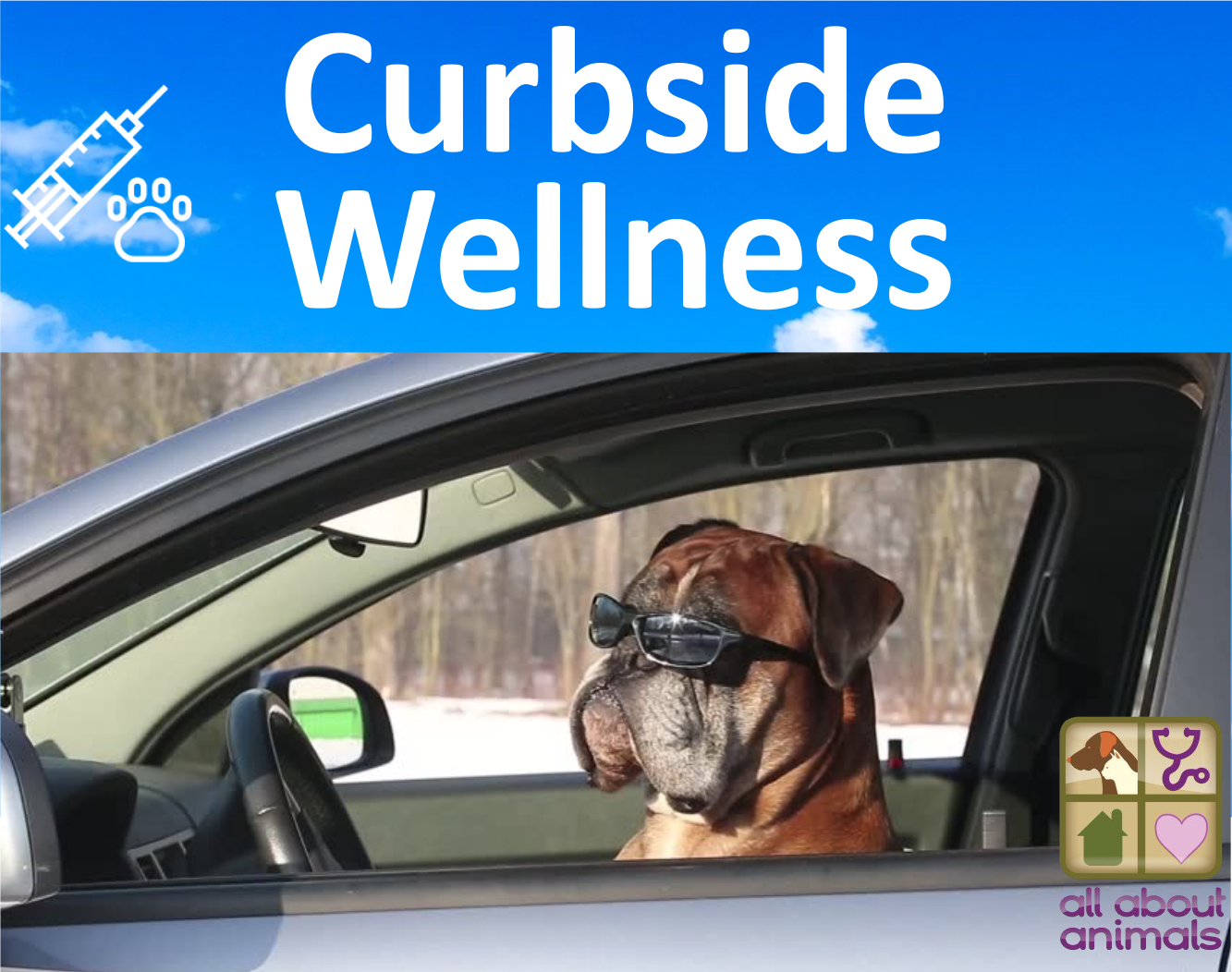 Curbside Wellness